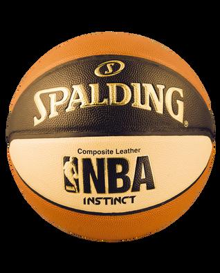 NBA INSTINCT BASKETBALL