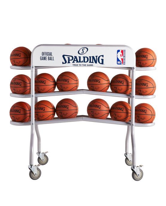 Official NBA Ball Truck