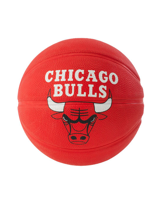 NBA Team Mini Basketball